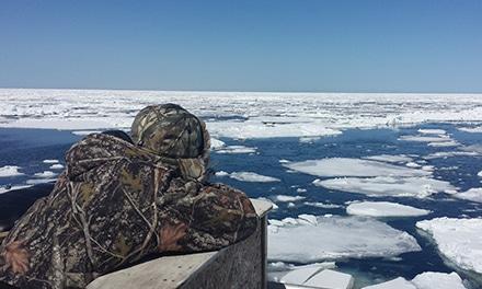 Chasseur sur les glaces